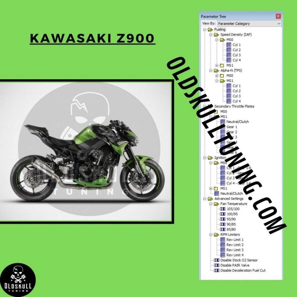 kawasaki z900 denso tunerpro xdf